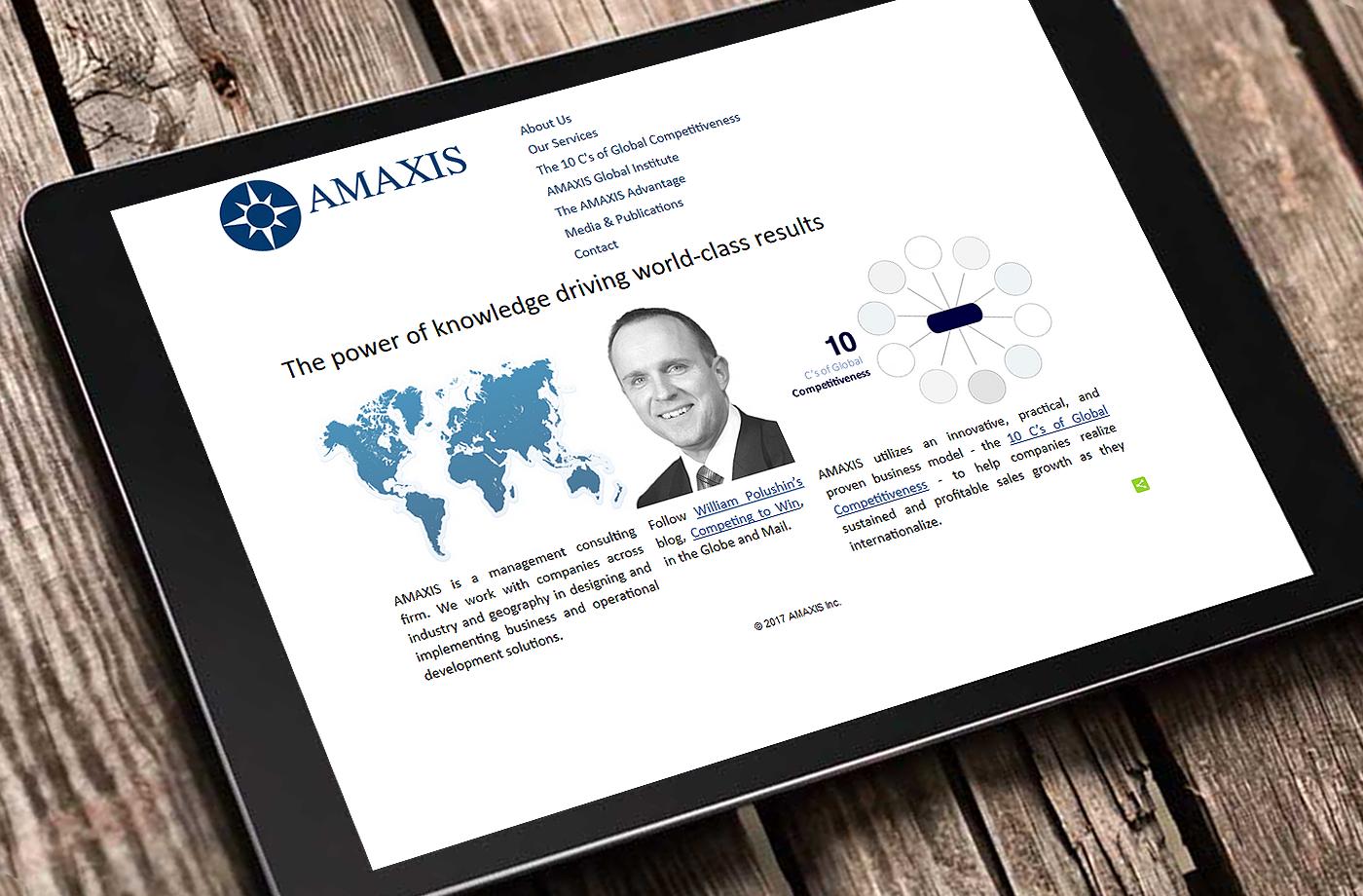 Web Design Portfolio: Amaxis
